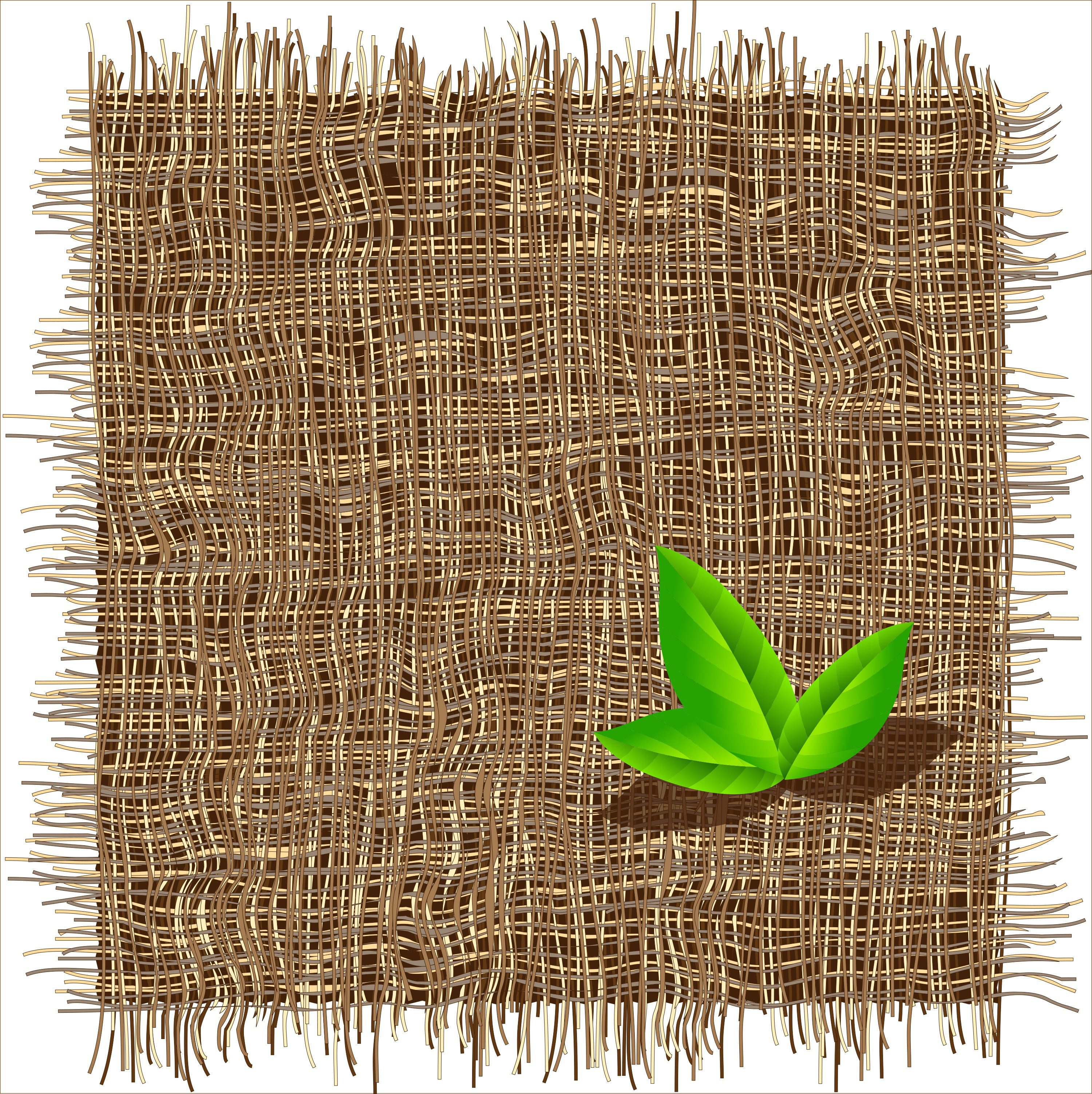 Eco-chato, bio-desagradável , Ambientalista